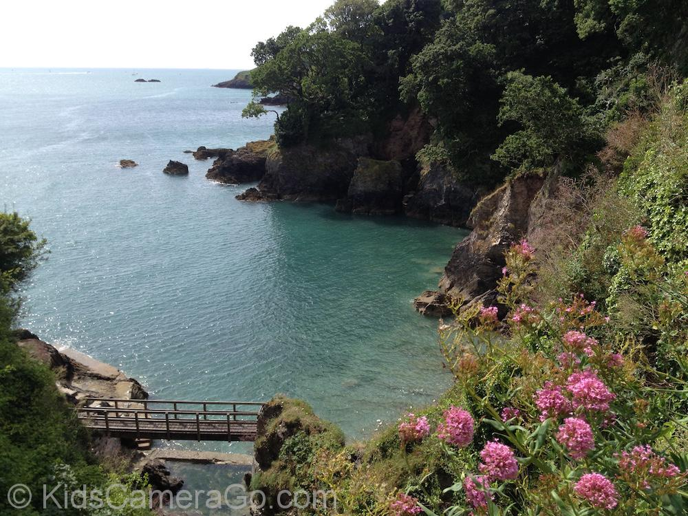 Castle Cove from Dartmouth Castle